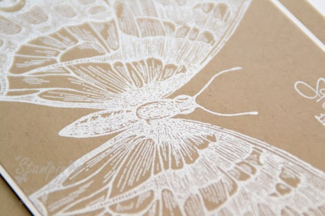 _DSC9246 Stampin Up Sale-a-bration Frühlingsgefühle bloomIn' marvelous Swallowtail Embossing _