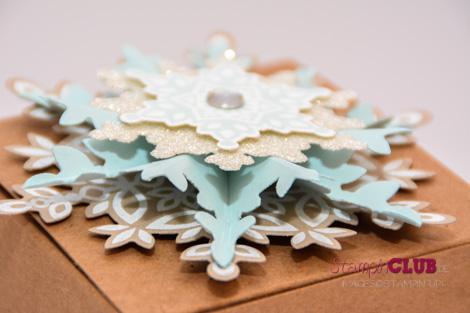 DSC_2776 Stampin Up christmas festive flurry ornament flockentanz box glue pen Bosch_