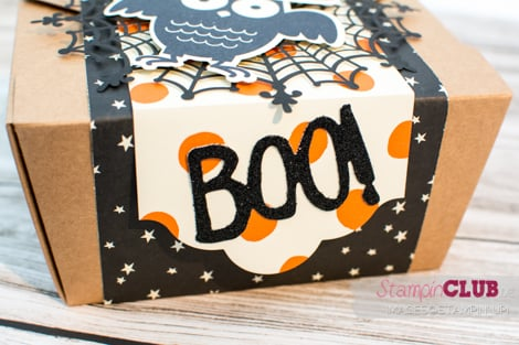 20150829 Stampin Up Halloween Box Howl-o-ween Treat Boo To You Framelits Spuk und Spaß Happy Haunting DSP Designerpapier Geisterstunde_-3