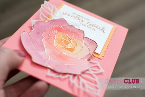 20160427 Stampin Up Floating Reinker Technique Aquarell Rosenzauber Rose Garden_-4