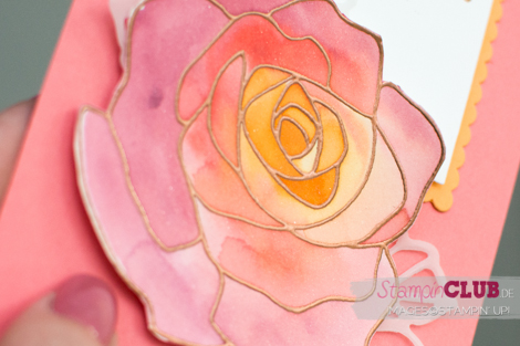 20160427 Stampin Up Floating Reinker Technique Aquarell Rosenzauber Rose Garden_-5