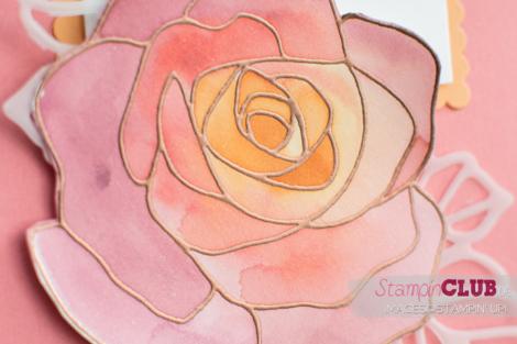 20160427 Stampin Up Floating Reinker Technique Aquarell Rosenzauber Rose Garden_-6