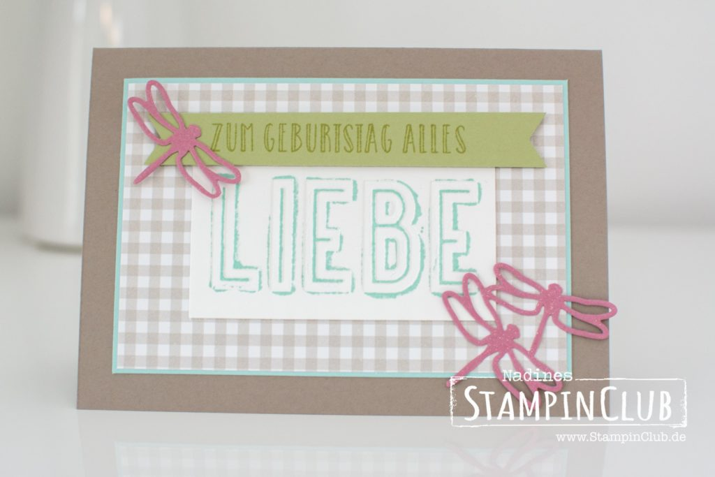 20161218-stampinclub-stampin-up-libelle-detailed-dragonfly-feierstimmung-happy-celebration-feierliches-duo-celebration-duo