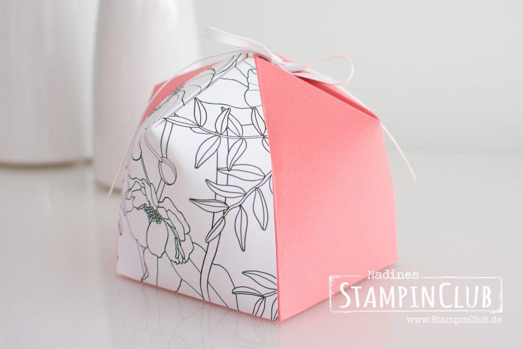 Stampin' Up!, StampinClub, XL Dome Box, XL Kuppelbox, Designerpapier Kreativ Koloriert, Inside the Lines DSP, Sale-A-Bration, Verpackung, Video-Anleitung