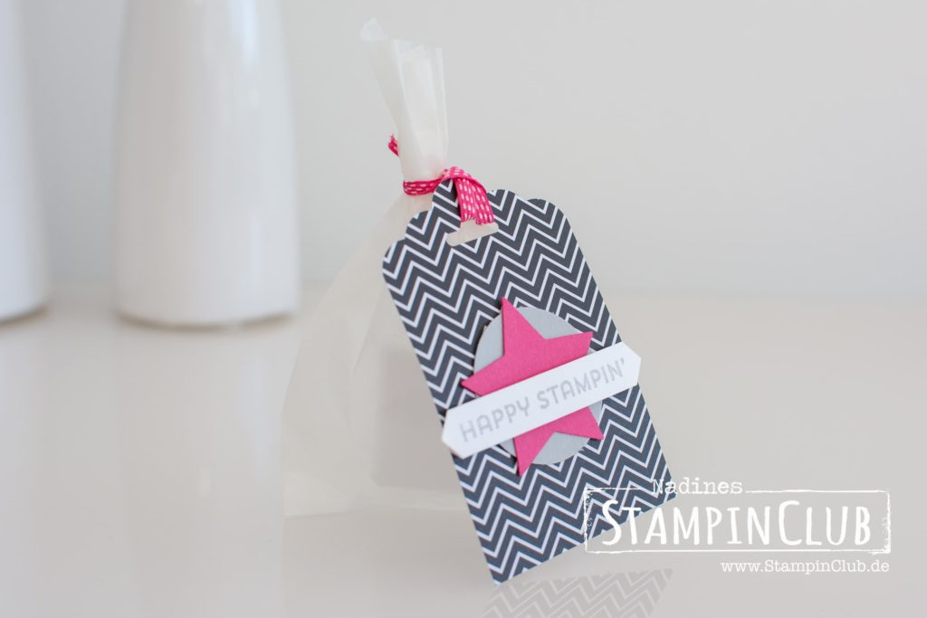 Stampin' Up!, StampinClub, Pink mit Pep, Best Decision Ever, Goodies
