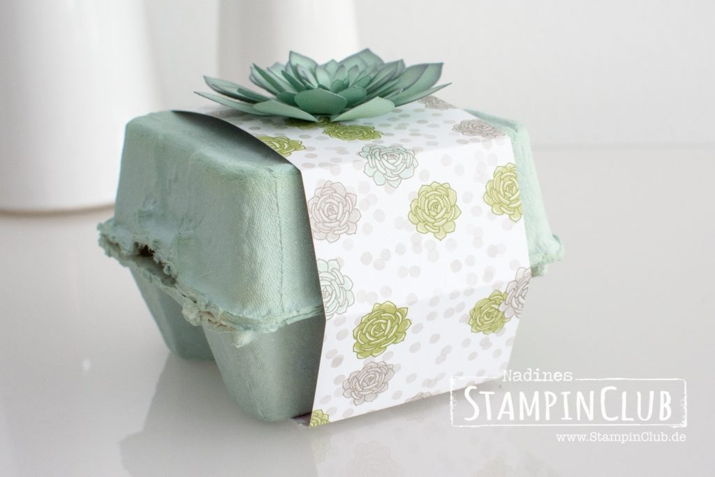 Stampin' Up!, StampinClub, Designerpapier Sukkulentengarten, Succulent Garden DSP, Framelits Sukkulenten, Succulent Framelits Dies, Eierkartons