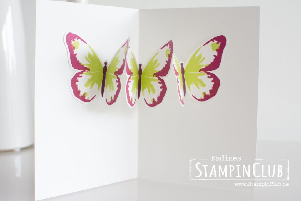 Stampin Up, StampinClub, Watercolor Wings, Pop-Up Karte, Pop-Up Card