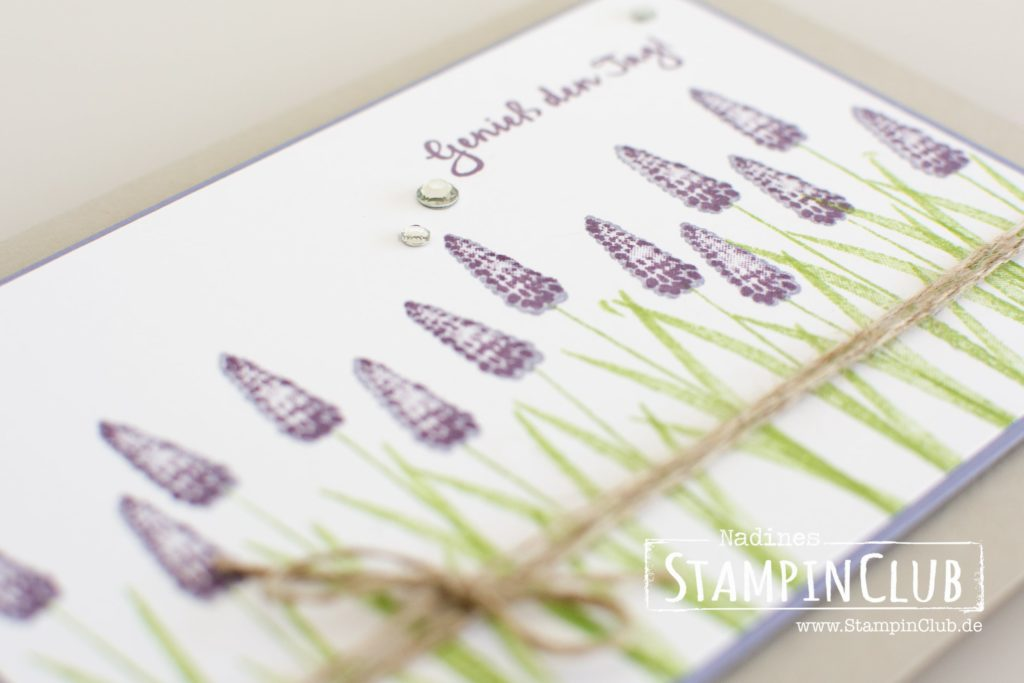 Stampin' Up!, StampinClub, Dies & Das, Pieces & Patterns, Tranquil Tulips