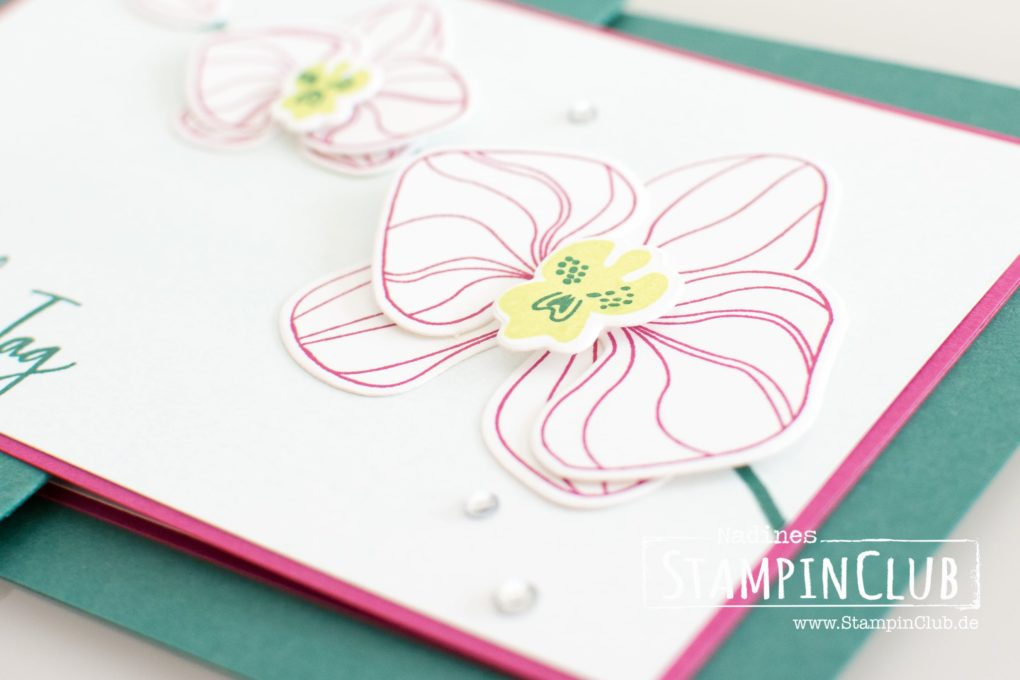 Stampin' Up!, StampinClub, Orchideenzweig, Climbing Orchid, Framelits Orchideenblüten, Orchid Buider Framelits