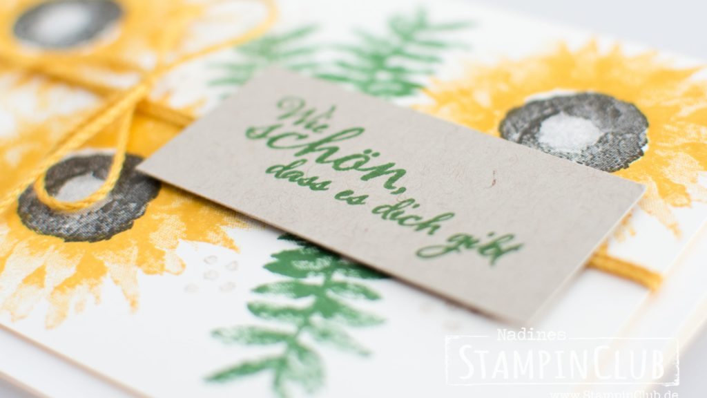 Painted Harvest, StampinClub, Stampin' Up!, Herbstanfang