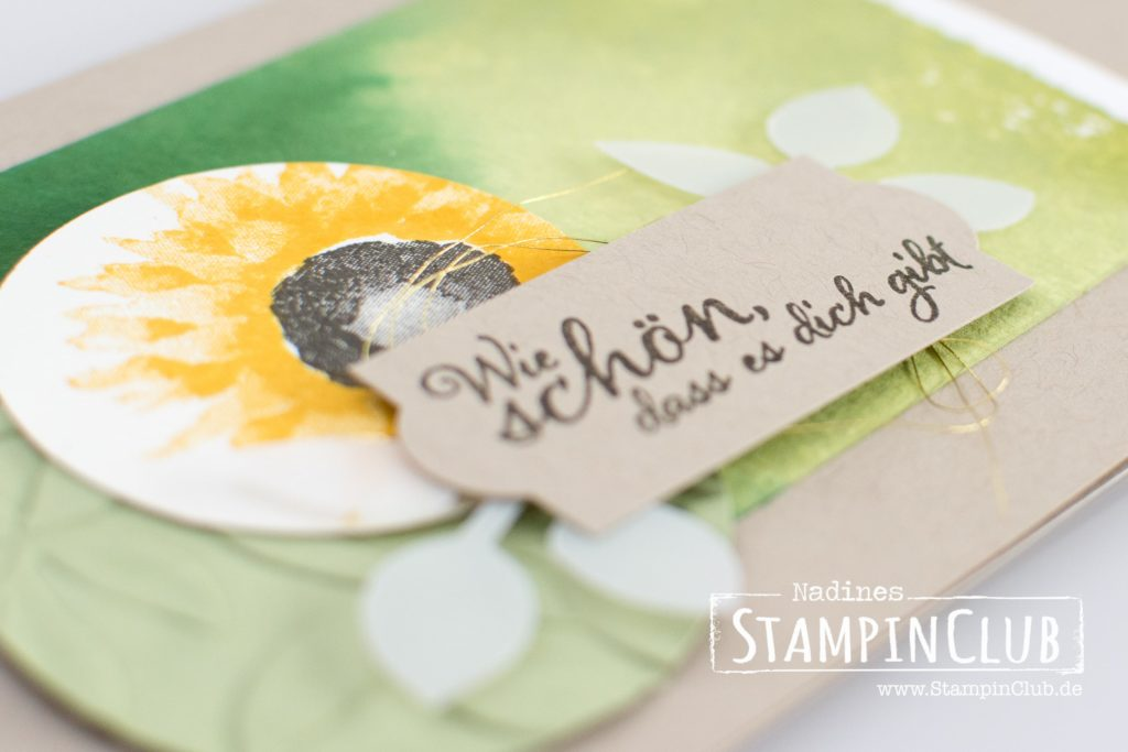 Herbstanfang, Stampin' Up!, StampinClub, Painted Harvest
