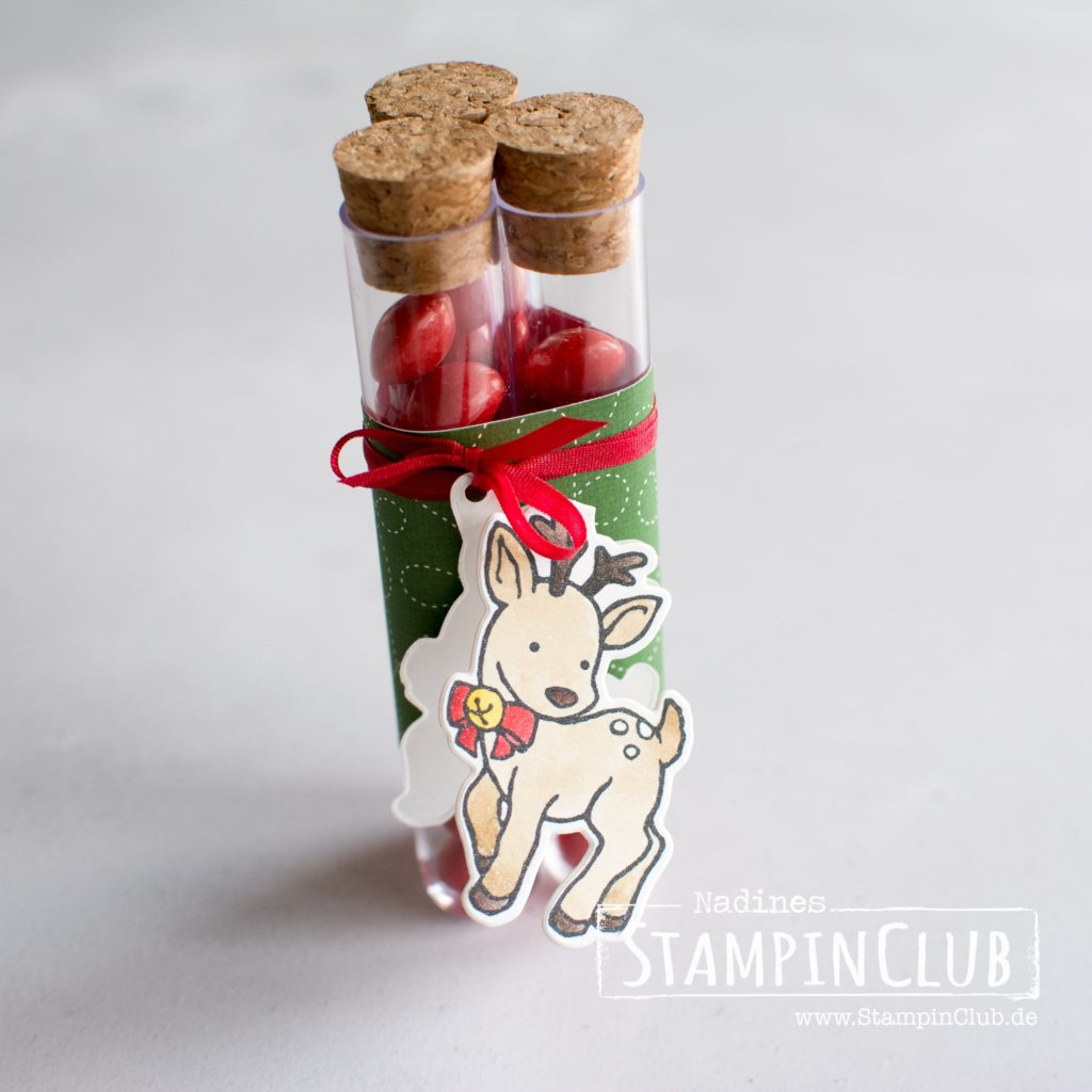 Seasonal Chums, Stampin' Up!, StampinClub, Treat Tube, Süßigkeiten Röhrchen, Seasonal Chums