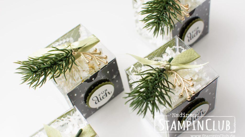Stampin' Up!, StampinClub, Goodies, Weihnachten, Tortentraum, Cake Soiree, Designerpapier Frohes Fest