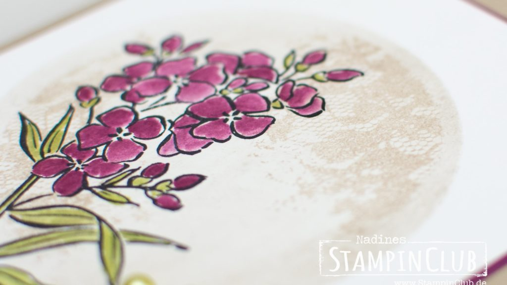 Stampin' Up!, StampinClub, Southern Serenade, One Layer