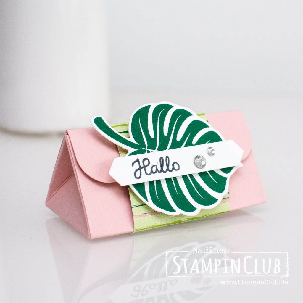 Dreieckbox mit Anleitung für Stampin' Up! Produkte, StampinClub, Verpackung, Dreieckbox, Triangelbox, Tropenflair, Tropical Chic, Traumhaft Tropisch DP, Tropical Escape DSP