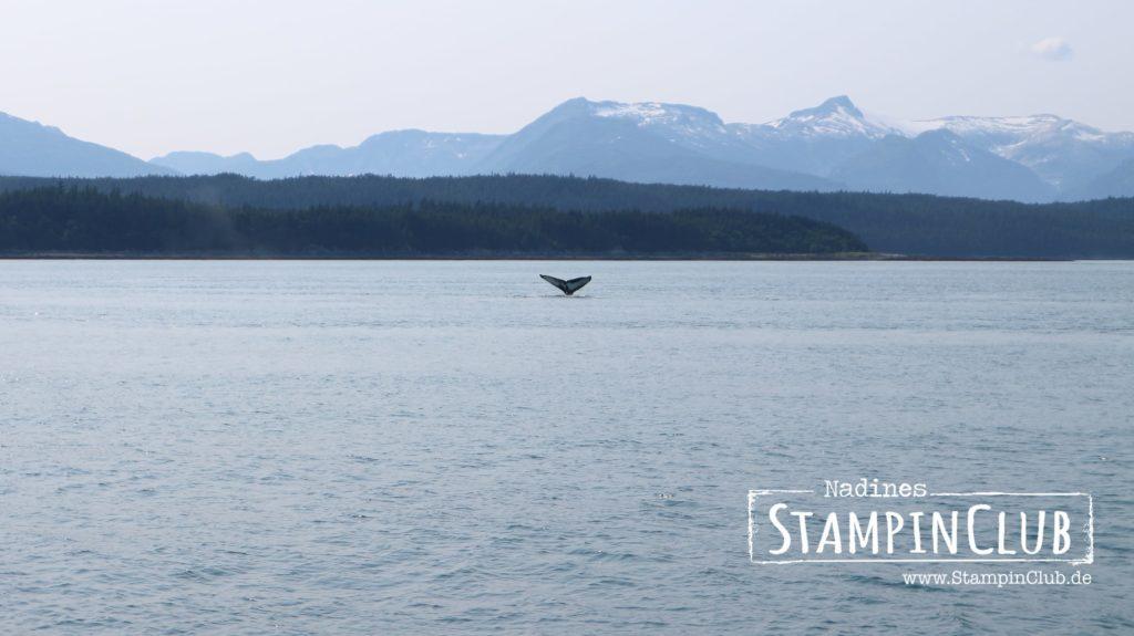 Juneau, Stampin' Up!, StampinClub, Prämienreise, 2018, Alaska, Kreuzfahrt