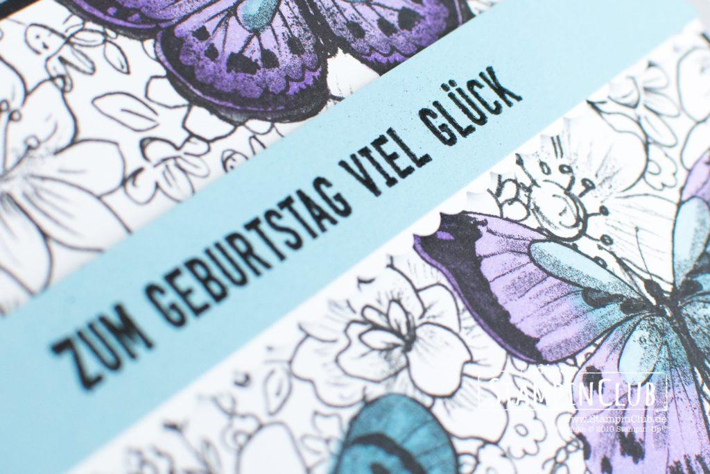 Stampin' Up!, StampinClub, Sale-A-Bration, Designerpapier Schmetterlingsvielfalt, Botanical Butterfly DSP, Geburtstagsmix, Itty Bitty Birthdays