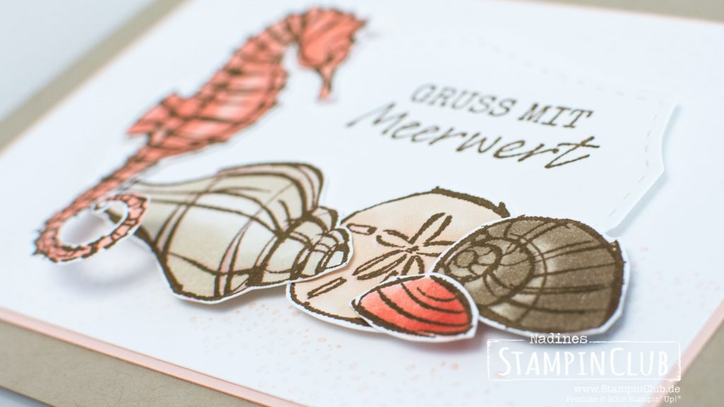Stampin' Up!, StampinClub, Mit Meerwert, Seaside Notions, Stanzformen Wildrosentraum, Wild Rose Dies
