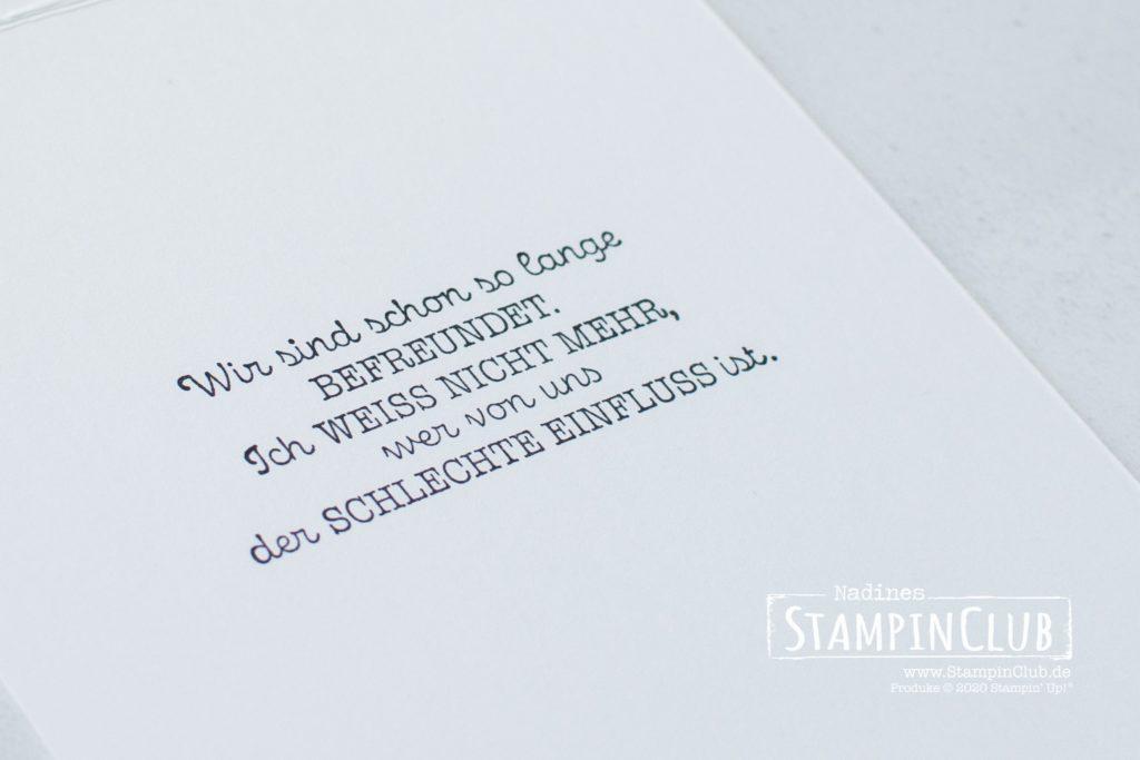 Stampin' Up!, StampinClub, Geheimnis der Freundschaft, Thanks for the Laughs, Stanzformen So hübsch bestickt