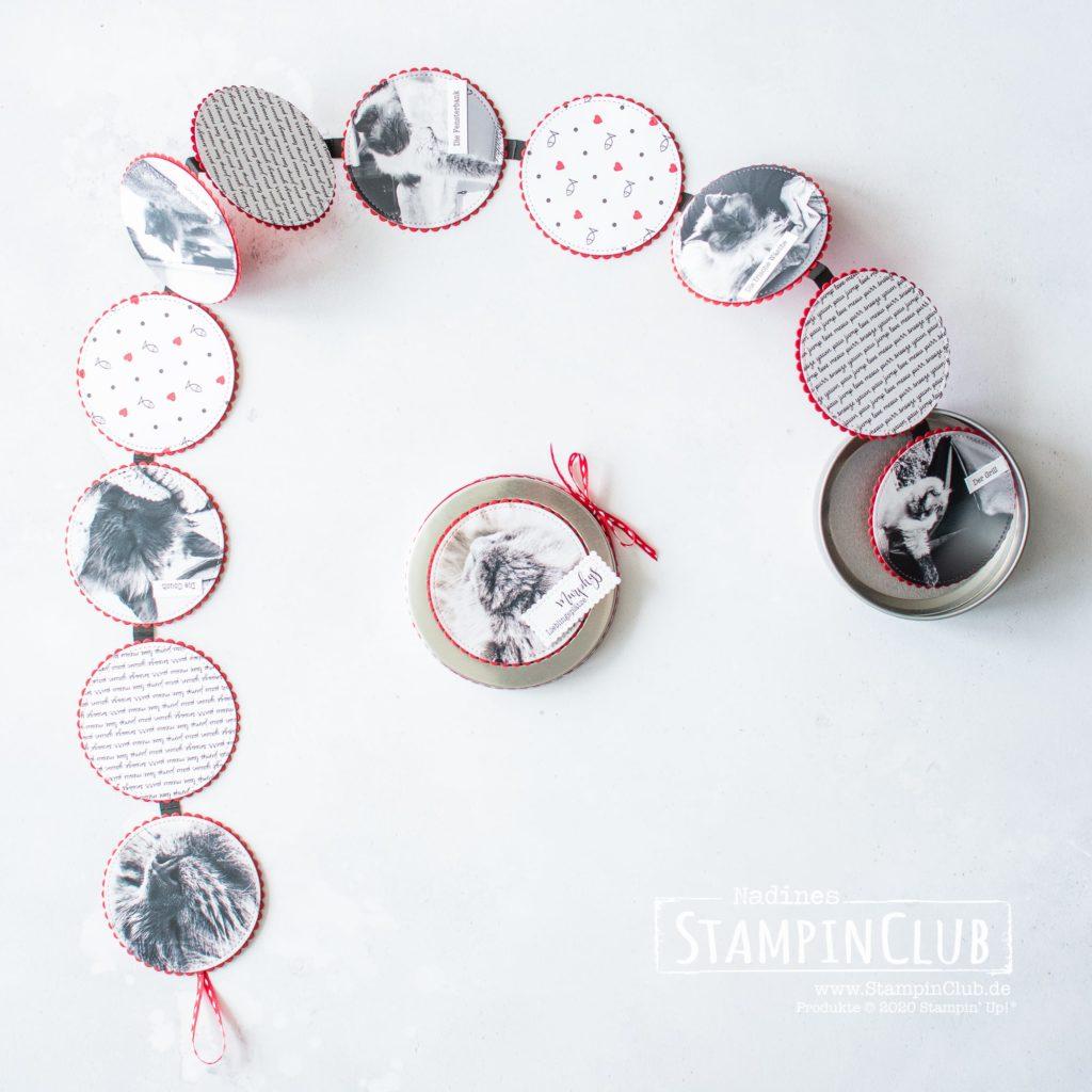 Minialbum Runde Blechdose, StampinClub, Stampin' Up!, Minialbum, Mini-Album, Designerpapier Tierliebe, Playful Pets DSP, Runde Blechdosen, Round Tins