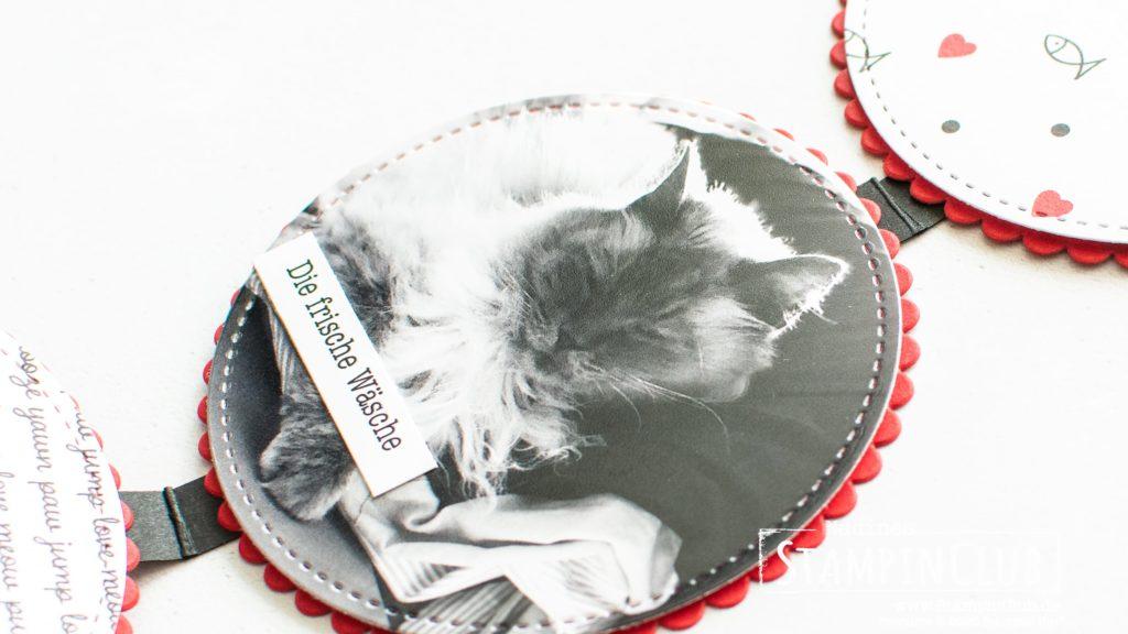 StampinClub, Stampin' Up!, Minialbum, Mini-Album, Designerpapier Tierliebe, Playful Pets DSP, Runde Blechdosen, Round Tins