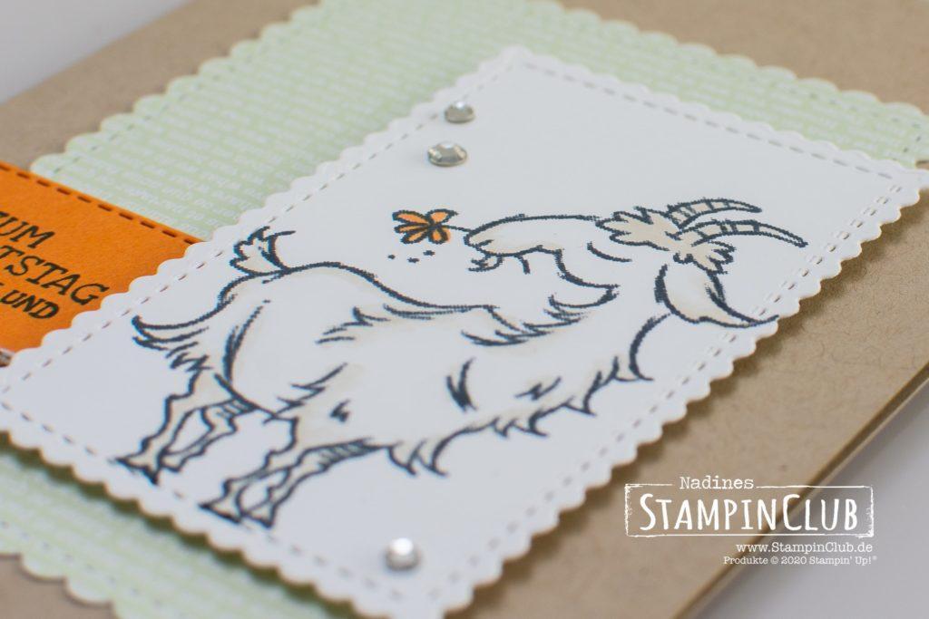 Stampin' Up!, StampinClub, Nix zu meckern, Way to Goat, Stanzformen So hübsch bestickt, Stanzformen Bestickte Rechtecke